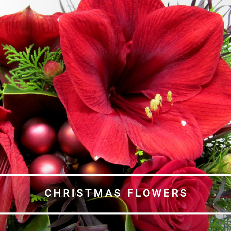 flowers-are-us-christmas-day